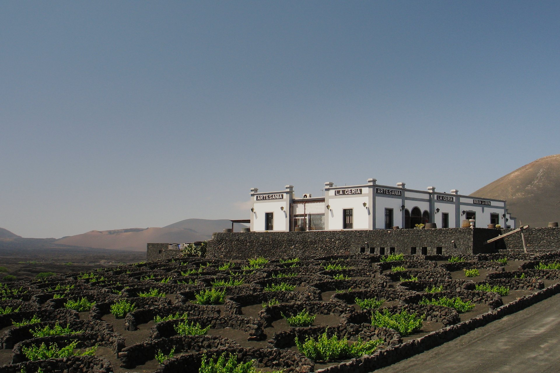 A Bodega in La Geria, Lanzarote