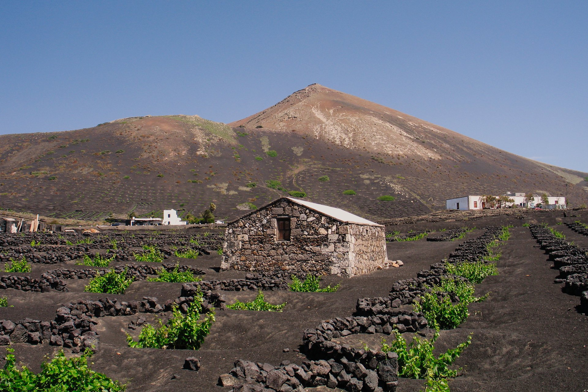 La Geria, Lanzarote's Wine-growing Region