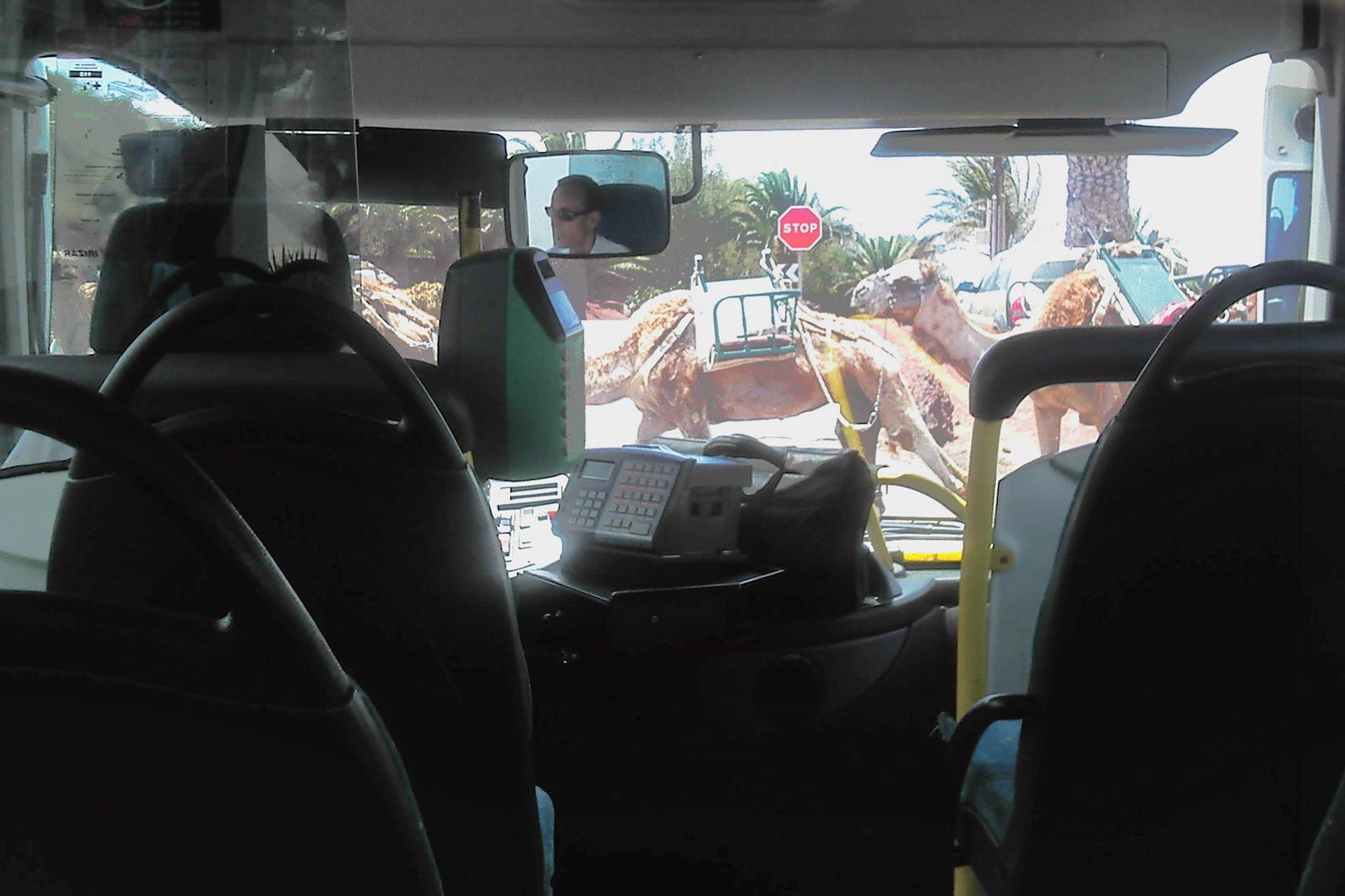 Lanzarote Bus Routes and Timetables | LanzaroteGuide com