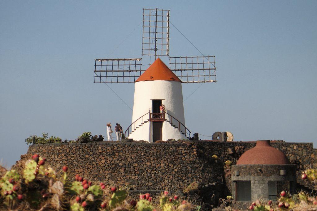 Windmill, Cactus Garden, Lanzarote